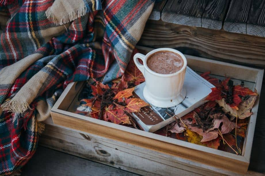 Mug of hot chocolate, book, blanket and autumn leaves